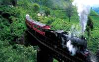 train-travel-srilanka